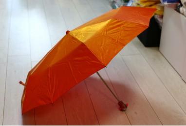 Зонт осенний