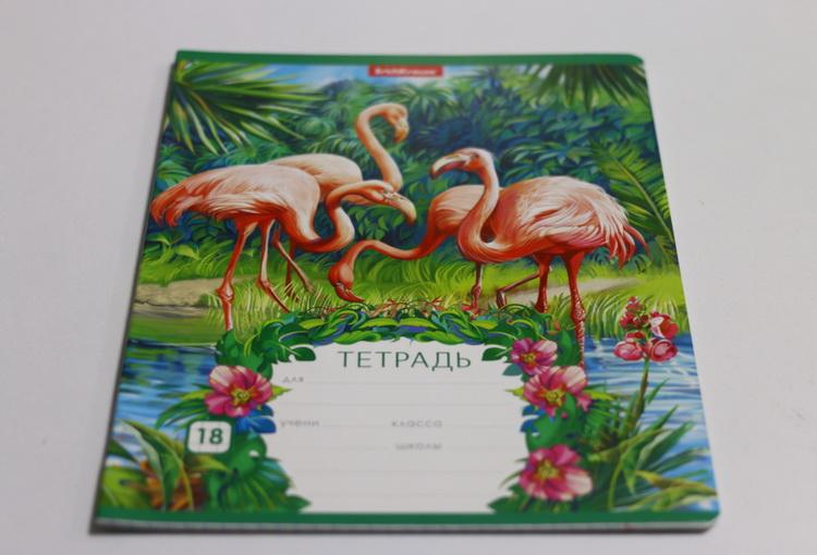 Тетрадь 18л # фламинго