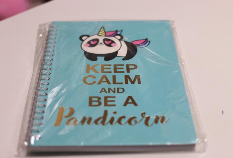 Блокнот в точку панда