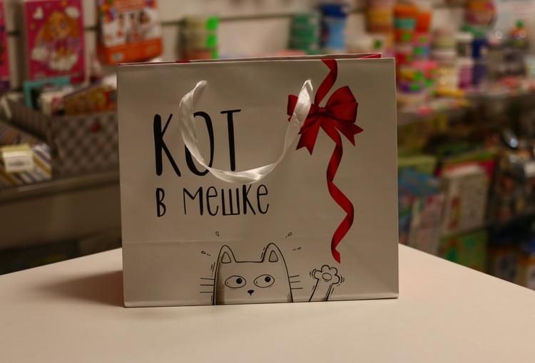 Пакет кот в мешке